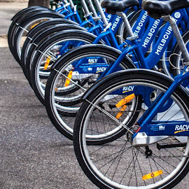 Bike by Tracey Ann - Transportation Bicycles