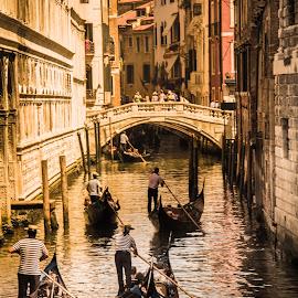Venice by Bob Zorn - City,  Street & Park  Historic Districts ( vacation, 2014-06 )
