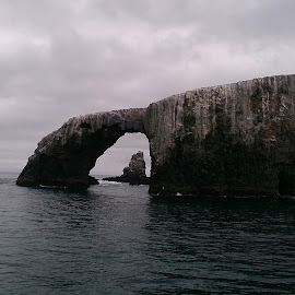 Arch by Miguel Rodriguez - Landscapes Caves & Formations ( california, pacific ocean, anacapa, los angeles, cave )