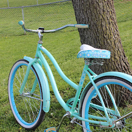 Teal Bike by Amber Powell - Transportation Bicycles ( color, themes, ph!24p01, week 3 )