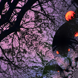 Magical Sunset by Jan Vilums - Digital Art Abstract ( abstracts, magical, art, contest, photography,  )