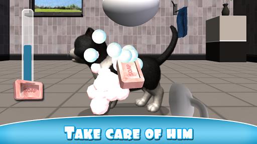 Daily Kitten: virtual cat pet - screenshot