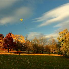 by Irena Brozova - City,  Street & Park  City Parks