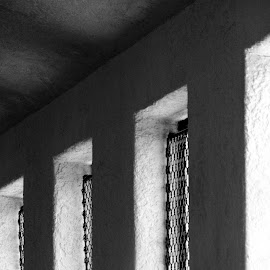 Windows by Daniel Hopkins - Buildings & Architecture Other Interior ( old, monochrome, shadow, buildings, windows, architecture, light,  )
