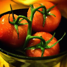 Maters by Steven Maerz - Food & Drink Fruits & Vegetables ( #tomatoes #food #macro #kitchen #dew #delicious )