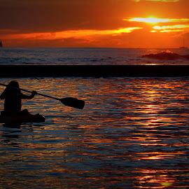 Sunset Paddler by Mina Thompson - Landscapes Beaches ( water, waikiki beach, sunset, paddling, beach, hawaii )