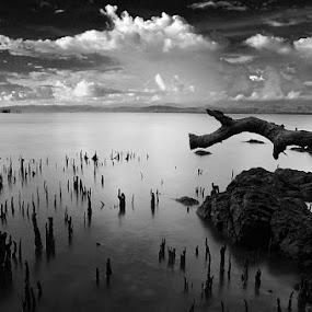 KABONGA DONGGALA by Hajar Wisnu Dwiputra - Black & White Landscapes