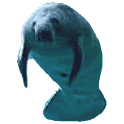 Manatee Full Sticker icon