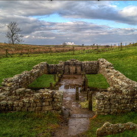 Temple of Mithras by Stephen Hall - Buildings & Architecture Public & Historical ( temple, england, uk, northumberland, mithras, hadrians wall, roman )