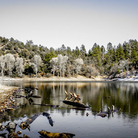 Winter Drift by Hoover Tung - Landscapes Mountains & Hills ( freedom, tranquil scene, remote, wat, people, inspiring, free, sky, nature, no people, arizona, snow, inspire, water, az, lake, forest, places, scenic, beauty in nature, boat, sunlight, woods, emotion, flagstaff, outdoors, trees, day, inspirational, , noordhoek, south africa, noordhoekchallenge, renewal, green, forests, natural, relaxing, meditation, the mood factory, mood, emotions, jade, revive, earthly, relax, tranquil, tranquility )