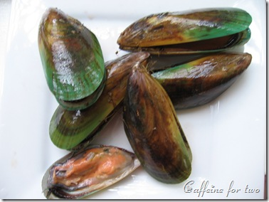 green lips mussel (1)