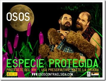 cartel_osos_50x70