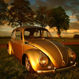 Sunset bug by Omar Salam - Transportation Automobiles ( vw, sunset, retro, long exposure, beetle )