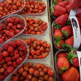 Italian Market by Pamela Howard - Food & Drink Fruits & Vegetables ( fruit, market, strawberries, venice, italy )