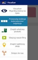 Screenshot of Dulux Visualizer PL