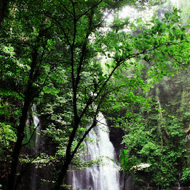 Tinago Falls by Ruel Tenerife - Landscapes Forests