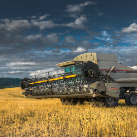 Time for work by Jessie Salmonson - Transportation Other ( field, clouds, wheat, washington, palouse, hill, sky, blue, combine, trees, tractor )