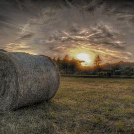 by Davide Fregosi - Landscapes Sunsets & Sunrises