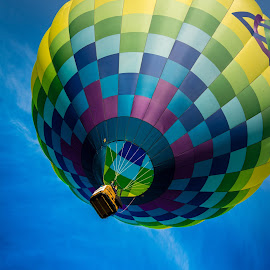 by Bob Gorman - Transportation Other ( hot air balloon, quad city balloon festival, festival, transportation, balloon )