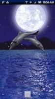 Screenshot of Dolphin Night Trial