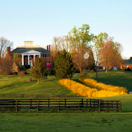 Country Estate by Leah Zisserson - Buildings & Architecture Homes ( home, houses, estates, virginia, spring,  )