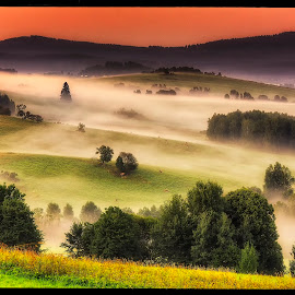 Sunrise near Želnava by Petr Klingr - Landscapes Sunsets & Sunrises ( hdr, fog, sunrise, morning, šumava,  )