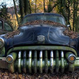 old times by Greg Warnitz UE - Transportation Automobiles ( car, old, oldtimer, abandoned, decay )