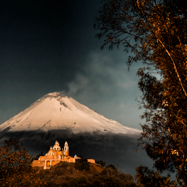 Popocatepetl snowy and trees by Cristobal Garciaferro Rubio - Landscapes Mountains & Hills ( cholula, volcano, mexico, puebla, leaf, leaves, snowy volcano, smoking volcano )
