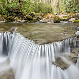 Smokey Mountain Stream by Michael Moss - Landscapes Waterscapes