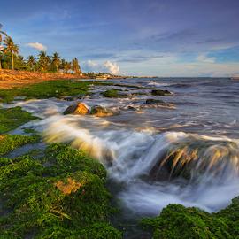 First Waves by Budi Astawa - Landscapes Beaches ( cupel, jembrana, negara )