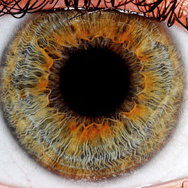 Color(full)... by Rui Isidro Falacho - People Body Parts ( macro, rui isidro falacho, colorful, falacho, eye, object, artistic, jewelry,  )