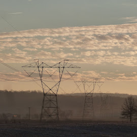 Transformers by Dorothy Siravo - Landscapes Prairies, Meadows & Fields ( transformers, pylon, morning mist, transmission towers, early morning, fields )