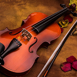 Nostalgia by Rakesh Syal - Artistic Objects Musical Instruments (  )