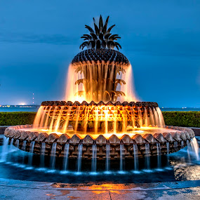 Pineapple Fountain by Cathie Crow - City,  Street & Park  Fountains ( charleston sc, night photography, wide angle, parks, pineapple fountain, south carolina )