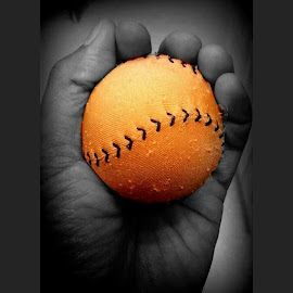 The Orange Ball by Catherine Arguelles - Sports & Fitness Baseball ( ball, baseball,  )