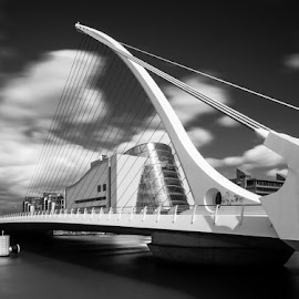 Samuel Beckett Bridge by Rafal Rozalski - Buildings & Architecture Bridges & Suspended Structures ( samuel becket, ireland, black and white, dublin, long exposure, architecture, bridge, river )