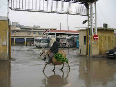 Pullman Bus Station w Aleppo