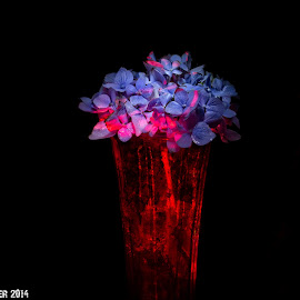 Survior by Bill Posner - Artistic Objects Glass ( glass, artistic, flowers )