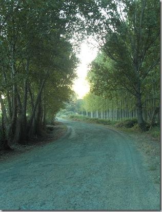 Via de la Plata 318