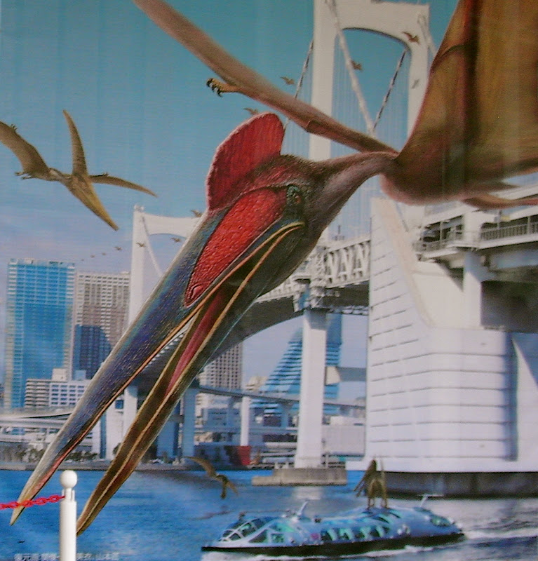 A close-up of the pterosaur exhibition sign