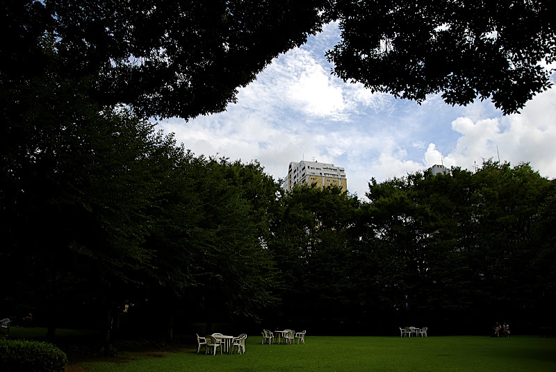 A wide open and green leisure area in Shizen Kyoiku Park