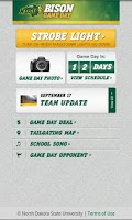 Screenshot of Bison Game Day