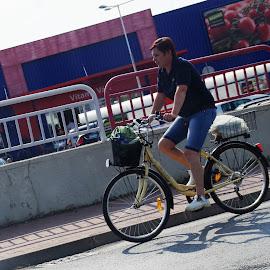 by Jozef Šolc - Transportation Bicycles ( bike, street, man )