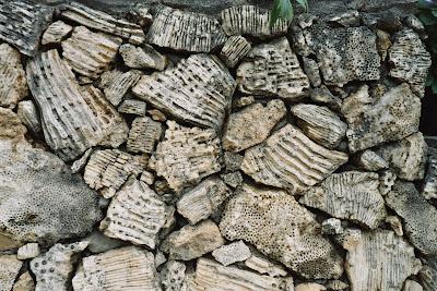 coral bricks