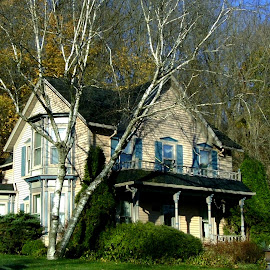 House at Base of Hill by Kathy Rose Willis - Buildings & Architecture Homes ( galena, wooden, illinois, green, trees, yellow, shutters, woods,  )