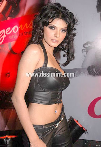Hot Desi Indian Actress Sherlyn Chopra : Sherlyn Chopra masala sexy image still pics gallery