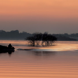 Lough Ree Ripples by Willie Forde - Transportation Boats ( ireland, sunset, westmeath, lough ree, boat )