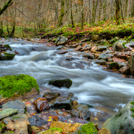 Wild River by Siniša Biljan - Nature Up Close Water