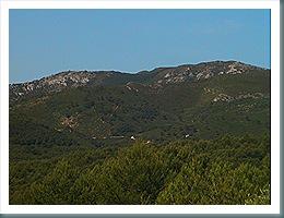 Coll de la Palma desde Despoblado de Irta