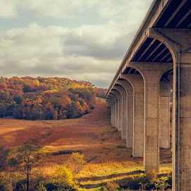 Turnpike Bridge, Cuyahoga Valley National Park by Martin Belan - Buildings & Architecture Bridges & Suspended Structures ( autumn, cuyahoga valley national park, fall, trees, bridge, bridge fall colors, turnpike bridge,  )